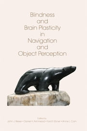 Blindness and Brain Plasticity in Navigation and Object Perception ebook by