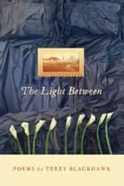 The Light Between ebook by Terry Blackhawk