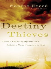 Destiny Thieves - Defeat Seducing Spirits and Achieve Your Purpose in God ebook by Sandie Freed