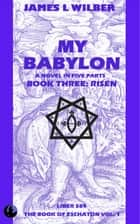 My Babylon - Book Three: Risen ebook by James L. Wilber