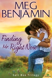 Finding Mr. Right Now ebook by Meg Benjamin