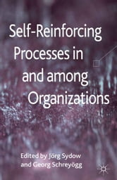 Self-Reinforcing Processes in and among Organizations ebook by