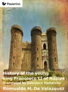 History of the young king Francesco II of Naples ebook by Romualdo M. De Velazquez, Salvatore Pastorello