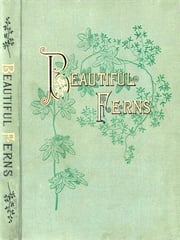 Beautiful Ferns ebook by Daniel Cady Eaton,Charles Edward Faxon, Illustrator,J. H. Emerton, Illustrator