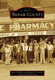 Telfair County ebook by Jane H. Walker,Robert E. Herndon,Jim Wooten