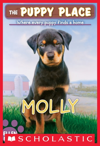 The puppy place 31 molly ebook by ellen miles 9780545577151 the puppy place 31 molly ebook by ellen miles fandeluxe PDF
