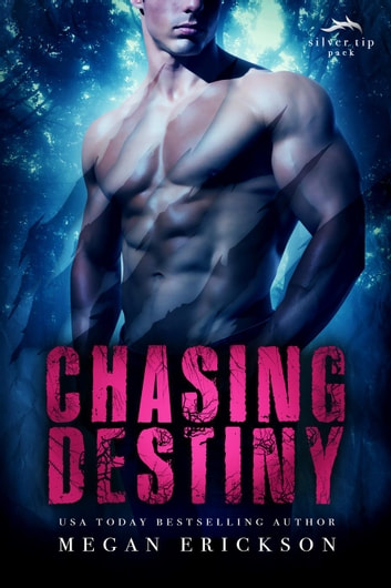Chasing Destiny - Silver Tip Pack, #2 ebook by Megan Erickson