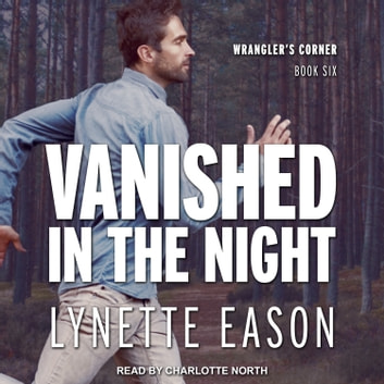 Vanished in the Night audiobook by Lynette Eason