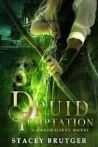 Druid Temptation ebook by Stacey Brutger