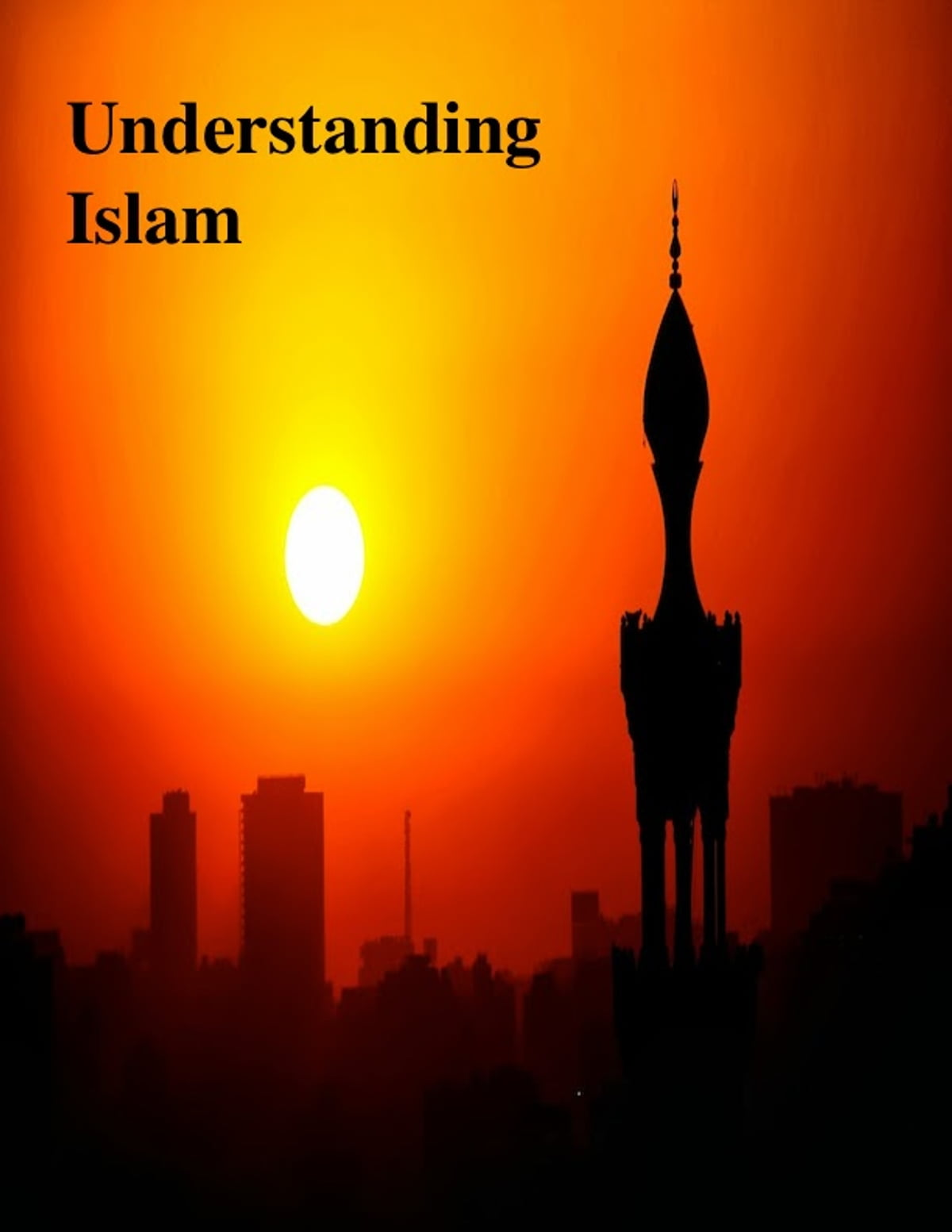 islam the second largest religion in the Islam is the second-largest religion in 20 states and judaism is number 2 in 15 states, mostly in the northeast the article also includes a map of the second-largest religions by county, and a map of the largest religious denominations by county (including christian denominations.