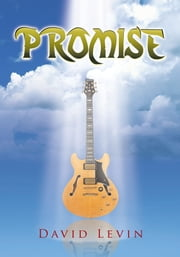 Promise ebook by David Levin