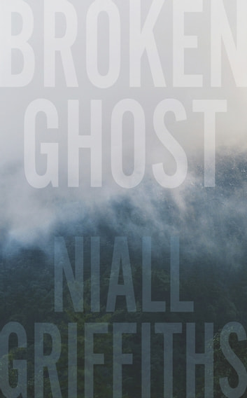 Broken Ghost ebook by Niall Griffiths