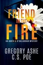 A Friend in the Fire ebook by