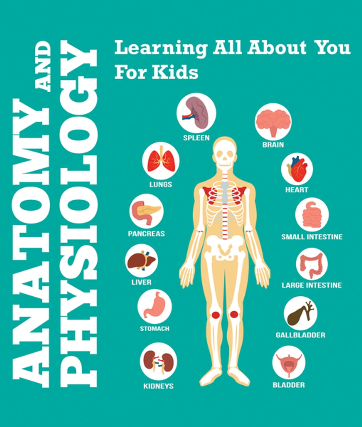 Anatomy And Physiology Learning All About You For Kids Ebook By