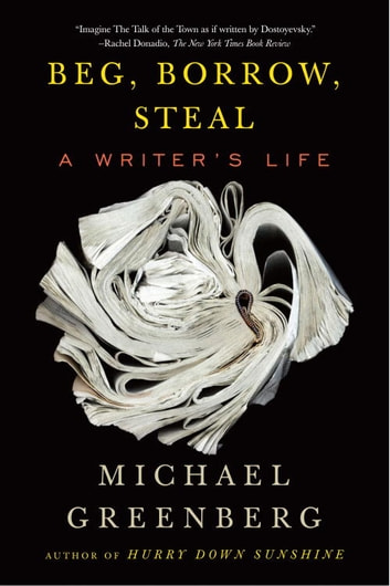 Beg, Borrow, Steal - A Writer's Life ebook by Michael Greenberg