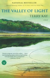 The Valley of Light - A Novel ebook by Terry Kay