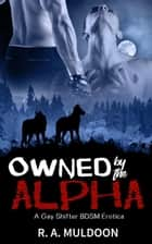 Owned by the Alpha ebook by R.A. Muldoon