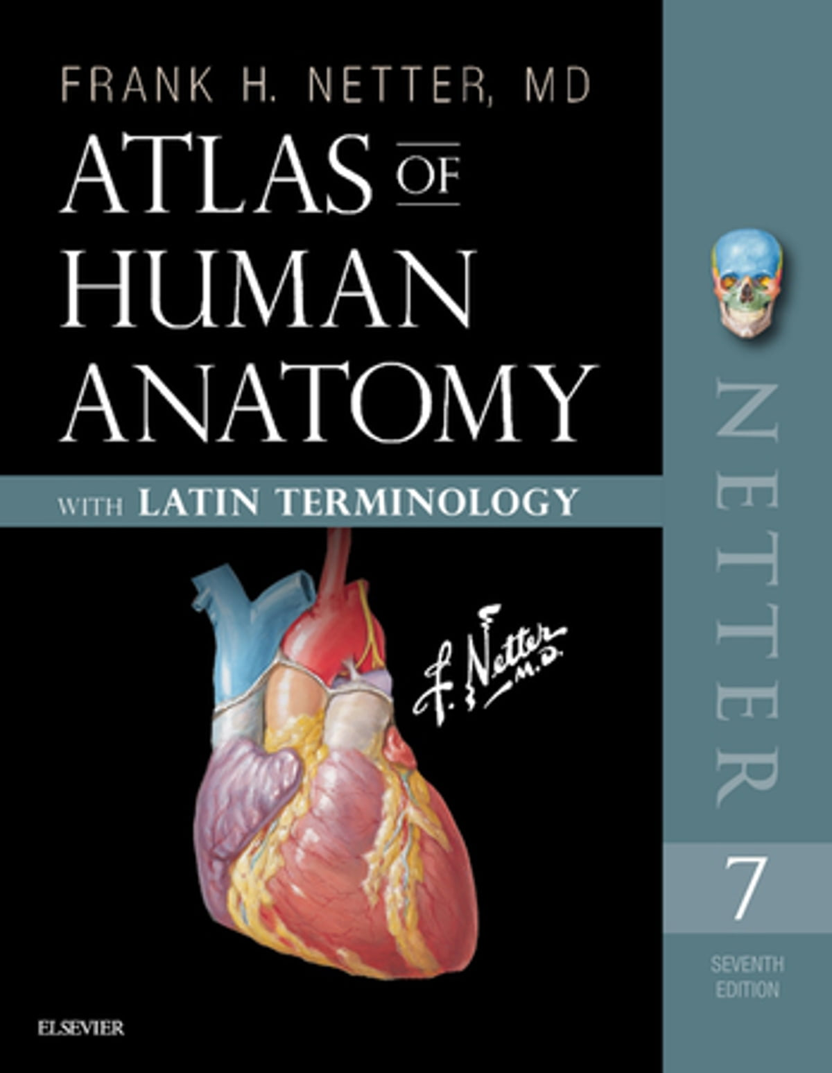 Atlas Of Human Anatomy Latin Terminology E Book Ebook By Frank H