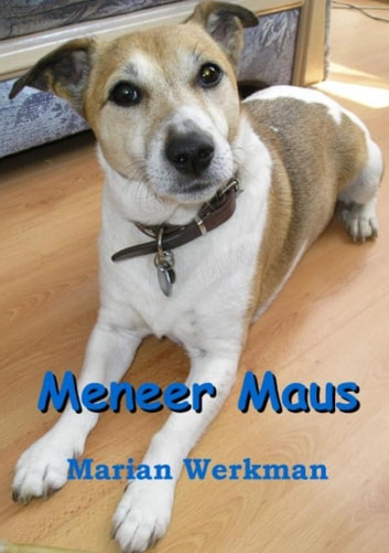 Meneer maus ebook by Marian Werkman