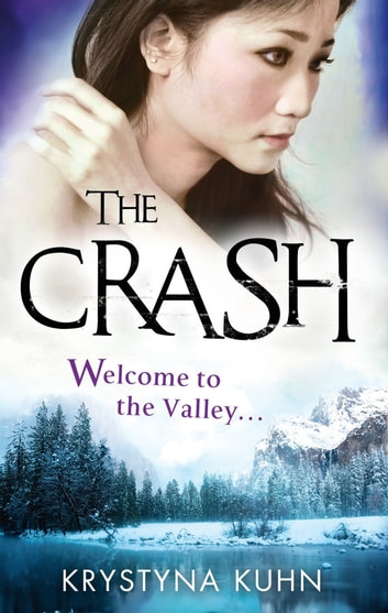 The Crash - Number 2 in series ebook by Krystyna Kuhn