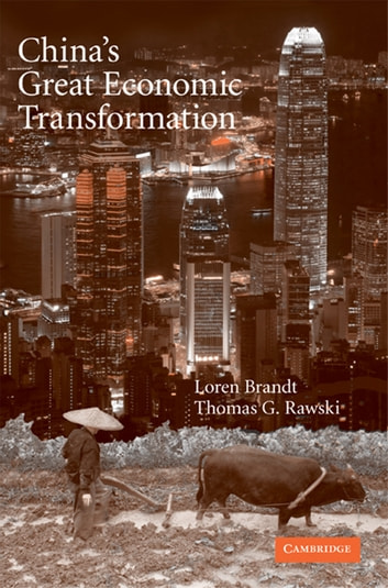 China's Great Economic Transformation ebook by