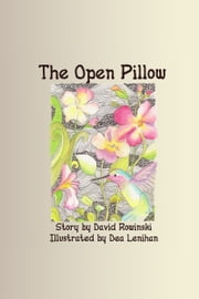 The Open Pillow ebook by David Rowinski