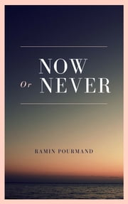 Now Or Never ebook by Ramin Pourmand