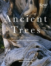 Ancient Trees - Trees that live for a thousand years ebook by  Anna Lewington