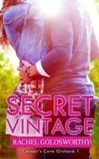 Secret Vintage ebook by Rachel Goldsworthy, Corsair's Cove