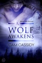 A Wolf Awakens ebook by Cam Cassidy