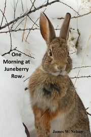 One Morning at Juneberry Row (Meet Sybil, the Cottontail Rabbit) ebook by James W. Nelson
