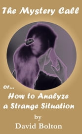 The Mystery Call or How to Analyze a Strange Situation ebook by David Bolton