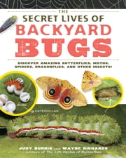 The Secret Lives of Backyard Bugs - Discover Amazing Butterflies, Moths, Spiders, Dragonflies, and Other Insects! ebook by Judy Burris,Wayne Richards