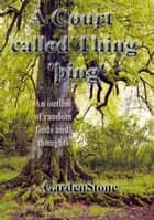 A Court called Thing ebook by Garden Stone