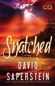 Snatched ebook by David Saperstein