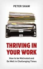 Thriving in Your Work - How to succeed and remain motivated in challenging times ebook by Peter Shaw