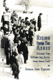 Rising from the Ashes Vol 1 - Beyond the Abyss ebook by Ronald John Vierling