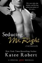 Seducing Mr. Right ebook by Katee Robert
