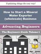 How to Start a Mineral Water Exporter (wholesale) Business (Beginners Guide) ebook by Roselia Sheridan