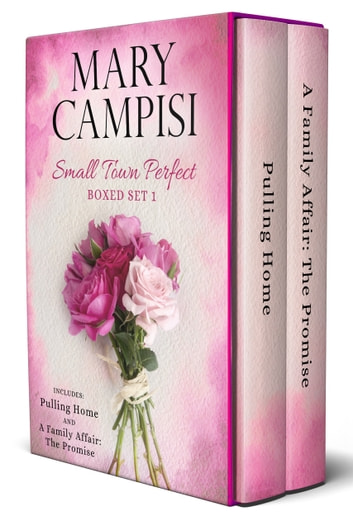 Small Town Perfect Boxed Set 1 ebook by Mary Campisi