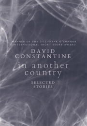 In Another Country - Selected Stories ebook by David Constantine