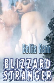 Blizzard Stranger ebook by Belita Renn