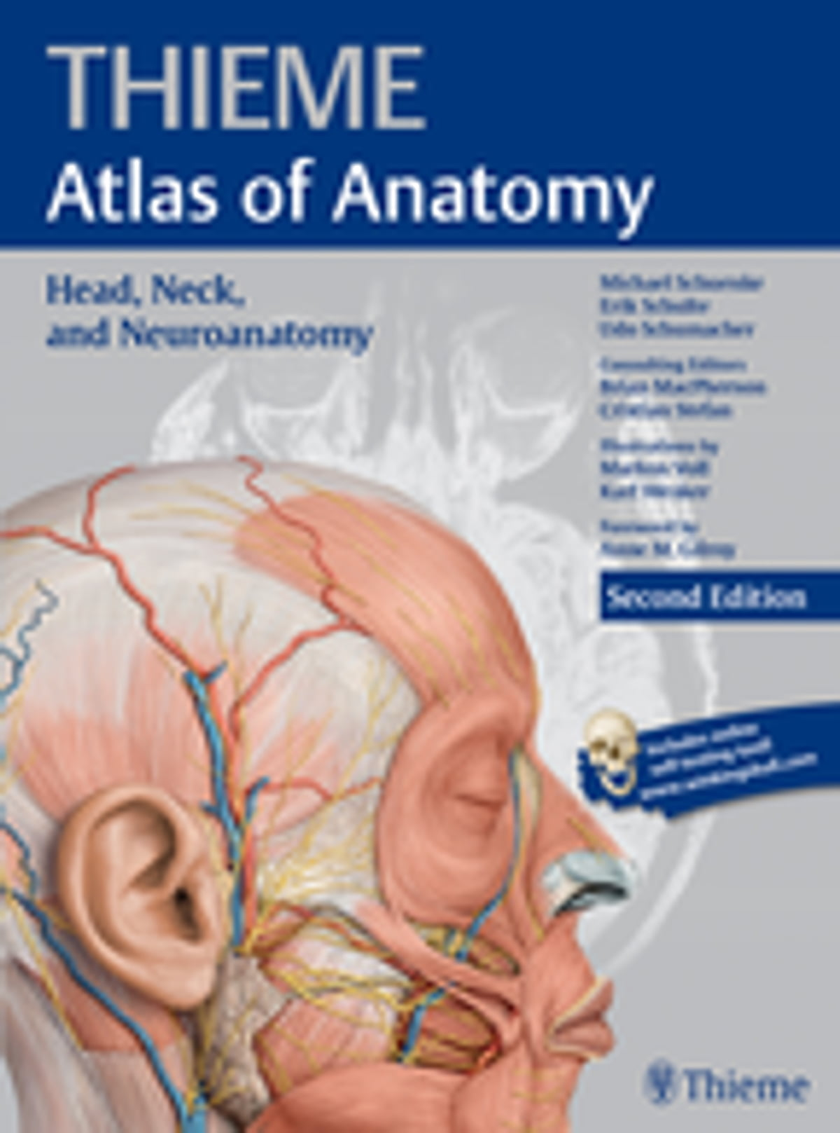 Head Neck And Neuroanatomy Thieme Atlas Of Anatomy Ebook By
