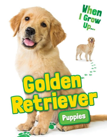 Golden Retriever Puppies Ebook By Emmie Chang 9781948052382