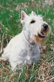 Training a Scottish Terrier For Beginners ebook by Geraldine Pettiford