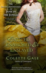 Enticed, Enamored & Enslaved - Three Complete Episodes ebook by Colette Gale