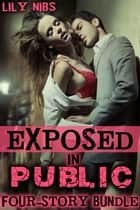 Exposed in Public: A Four-Story Bundle - Public Sex XXX Erotica Collection ebook by Lily Nibs
