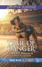 Trail of Danger ebook by Valerie Hansen
