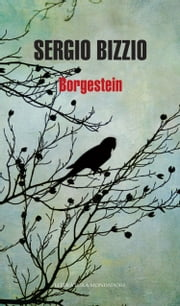 Borgestein ebook by Sergio Bizzio
