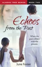 Echoes From the Past ebook by June Foster
